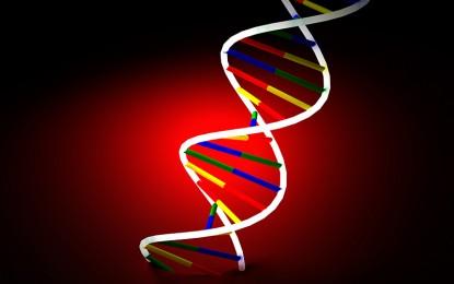 Nutrigenómica: Recomendaciones dietarias basadas en el genoma… ¿mito o realidad?