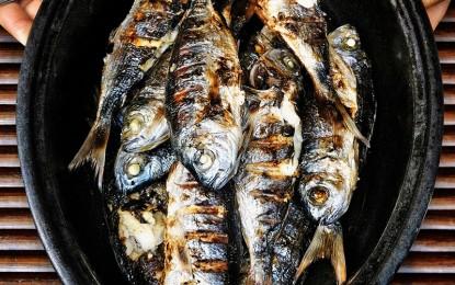 El pescado, un banquete de salud… pero en problemas