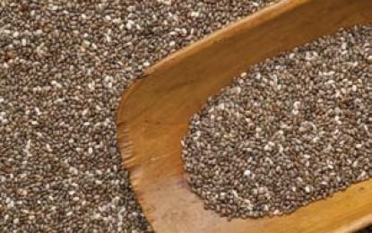 Omega-3 Aceites ricos en ácidos grasos, una innovación en nutrición