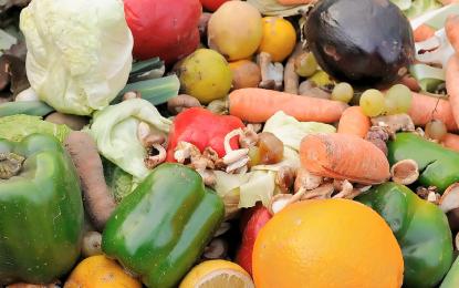 Pérdidas de alimentos en un mundo con hambre