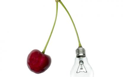 Plataforma de Innovación en Alimentos (PIAL): Los Desafíos del Trabajo de la Industria y la Academia