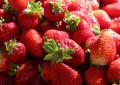 La Genómica Nutricional de la fruta: Alimentos para el Futuro de la Salud